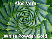 Aloe Vera White Powder Gold