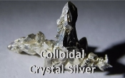 Colloidal Crystal Silver