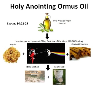 Holy Anointing Ormus Oil THC Free