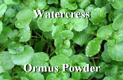 Watercress Ormus Powder