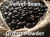 Velvet Bean Ormus Powder