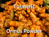 Turmeric Ormus Powder