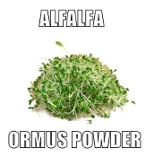 Alfalfa Ormus Powder