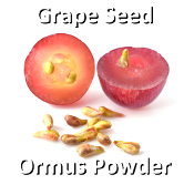 Grape Seed Ormus Powder