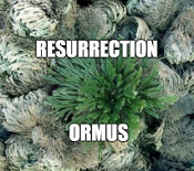 Resurrection Ormus